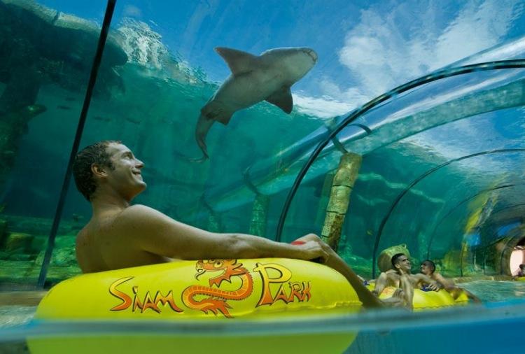Tenerife-Excusrions-Siam-Park-3